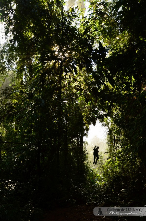 GibbonExpreience-Laos-photo-Guilhem-de-Lepinay-16