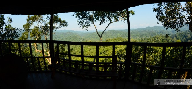 GibbonExpreience-Laos-photo-Guilhem-de-Lepinay-6