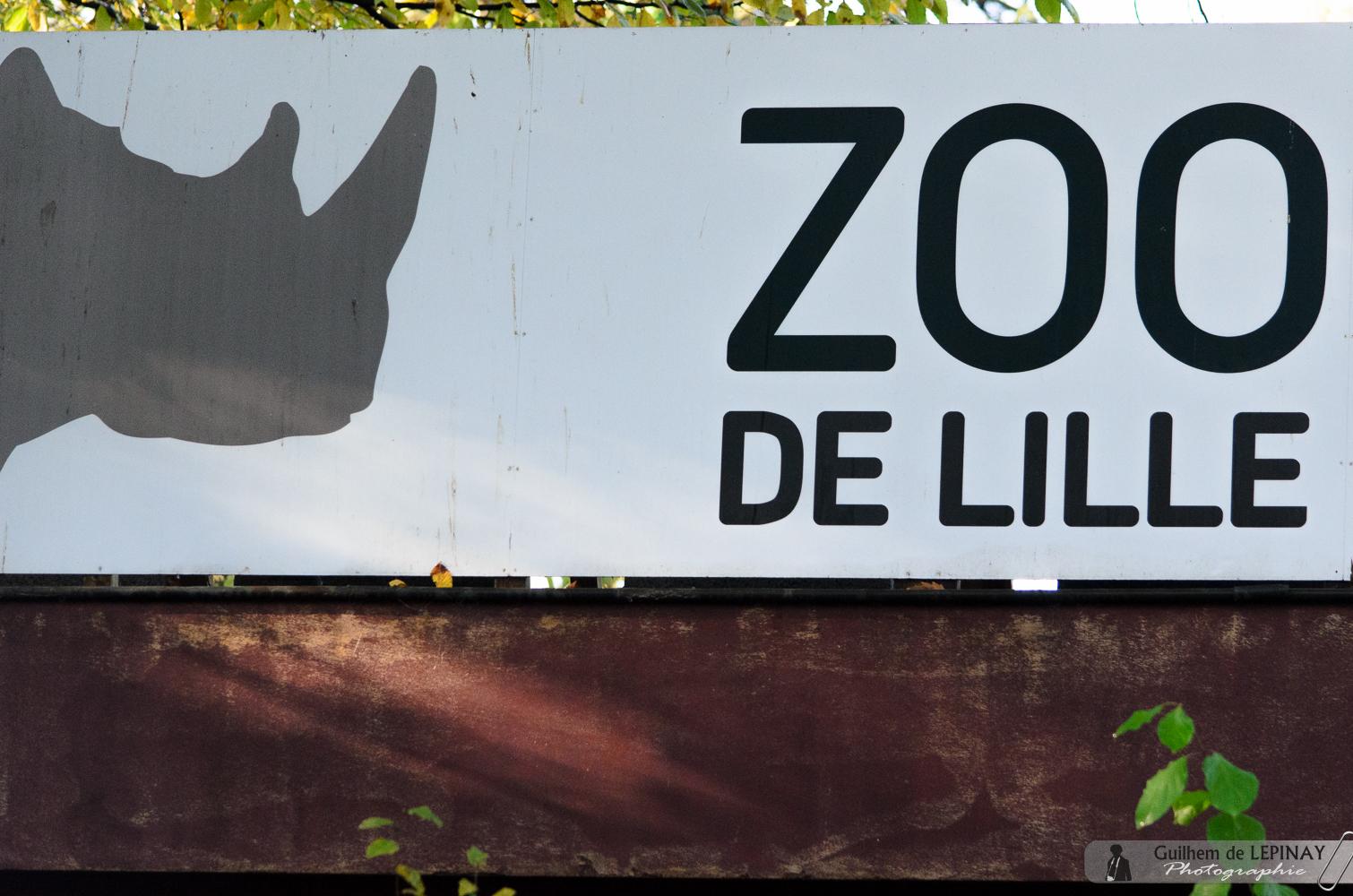 Photos zoo de Lille