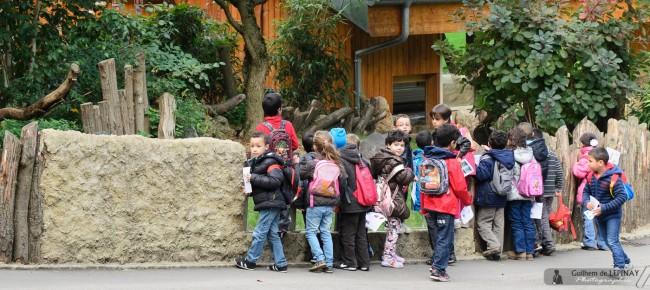 Zoo of mulhouse photo