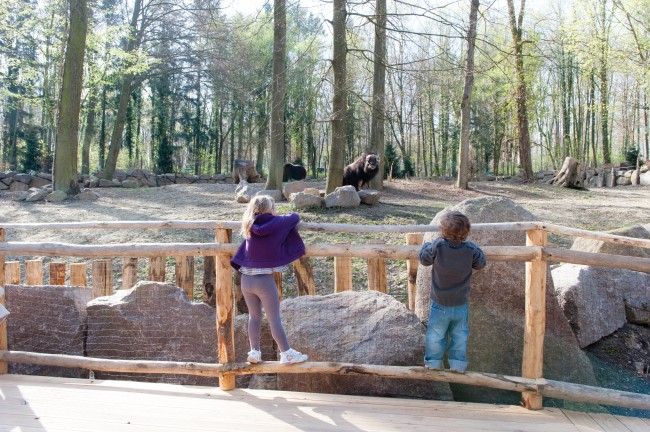 Espace-Grand-Nord-Zoo-Mulhouse-photographe-Guilhem-de-Lepinay-23