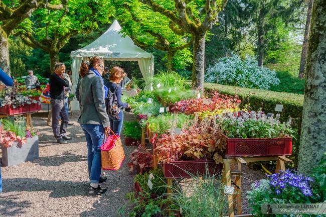 Marche-Aux-Fleurs-Zoo-de-Mulhouse-photographe-Guilhem-de-Lepinay-10
