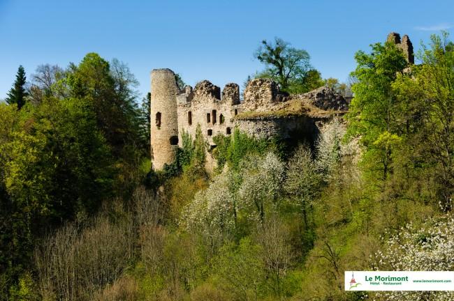 hotel-nature-Alsace-Le-Morimont-5627